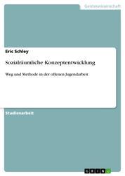 Sozialräumliche Konzeptentwicklung - Weg und Methode in der offenen Jugendarbeit
