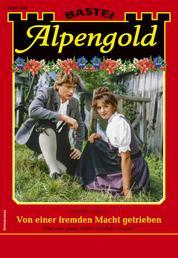 Alpengold 336 - Heimatroman - Von einer fremden Macht getrieben