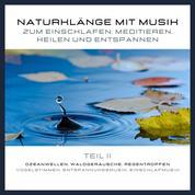Naturklänge mit Musik zum Einschlafen, Meditieren, Heilen und Entspannen - Teil 2 - Ozeanwellen, Waldgeräusche, Regentropfen, Vogelstimmen, Entspannungsmusik, Einschlafmusik