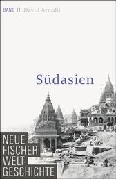 Neue Fischer Weltgeschichte. Band 11 - Südasien