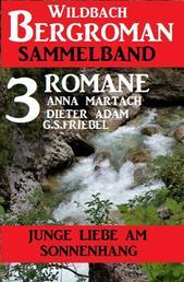 Junge Liebe am Sonnenhang: Wildbach Bergroman Sammelband 3 Romane