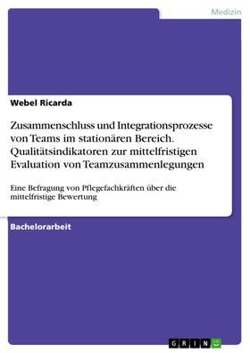 Zusammenschluss und Integrationsprozesse von Teams im stationären Bereich. Qualitätsindikatoren zur mittelfristigen Evaluation von Teamzusammenlegungen