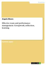 Effective team and performance management. Groupwork, reflection, learning