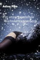Adina Pion: Ein unvergessliches Weihnachtsgeschenk ★★★★