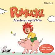 Pumuckl - Abenteuergeschichten (ungekürzt)