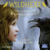 Wildhexe. Das Labyrinth der Vergangenheit - Folge 5