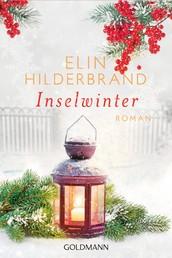 Inselwinter - Die Winter-Street-Reihe 2 - Roman