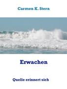 Carmen K. Stern: Erwachen