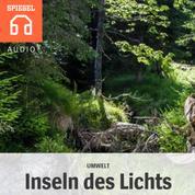 Umwelt: Inseln des Lichts - Großversuch im Nationalpark Bayerischer Wald