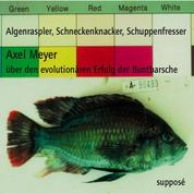 Algenraspler, Schneckenknacker, Schuppenfresser - Über den evolutionären Erfolg der Buntbarsche