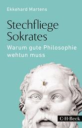 Stechfliege Sokrates - Warum gute Philosophie wehtun muss