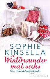 Winterwunder mal sechs - Eine Weihnachtsgeschichte