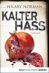 Kalter Hass - Psychothriller