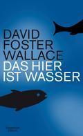 David Foster Wallace: Das hier ist Wasser ★★★★★