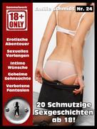 Emilie Schmidt: Erotischer Roman ab 18