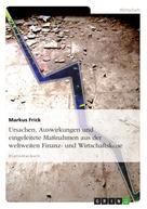 Markus Frick: Ursachen, Auswirkungen und eingeleitete Maßnahmen aus der weltweiten Finanz- und Wirtschaftskrise