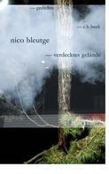 Nico Bleutge: verdecktes gelände