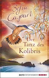 Der Tanz des Kolibris - Roman
