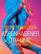 Terne Terkildsen: Kopenhagener Träume: Erotische Novelle