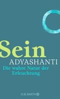 Adyashanti: Sein ★★★★★