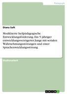 Diana Saft: Modifzierte heilpädagogische Entwicklungsförderung. Ein 5 jähriger entwicklungsverzögerter Junge mit serialen Wahrnehmungsstörungen und einer Sprachenwicklungsstörung