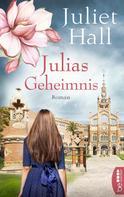 Juliet Hall: Julias Geheimnis
