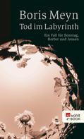 Boris Meyn: Tod im Labyrinth ★★★★★