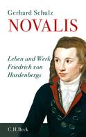 Gerhard Schulz: Novalis ★★★★