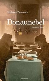 Donaunebel - Historischer Roman