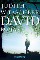 Judith W. Taschler: David ★★★★