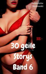 30 geile Storys – Band 6 - Hardcore Sex Sammelband