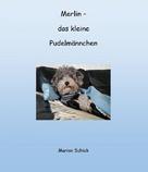 Marion Schick: Merlin - das kleine Pudelmännchen
