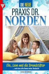 Die neue Praxis Dr. Norden 18 – Arztserie - Ela, Leon und die Brandstifter