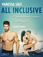 All inclusive – Bekenntnisse eines Callboys 8 - Erotische novelle