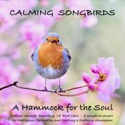 Calming Songbirds: Nature Sounds Recording Of Bird Calls - A songbird concert for Meditation, Relaxation and Creating a Soothing Atmosphere - A Hammock for the Soul