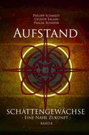Philipp Schmidt: Aufstand