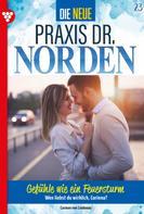 Carmen von Lindenau: Die neue Praxis Dr. Norden 23 – Arztserie